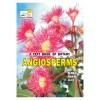 A TEXT BOOK OF BOTANY ANGIOSPERMS